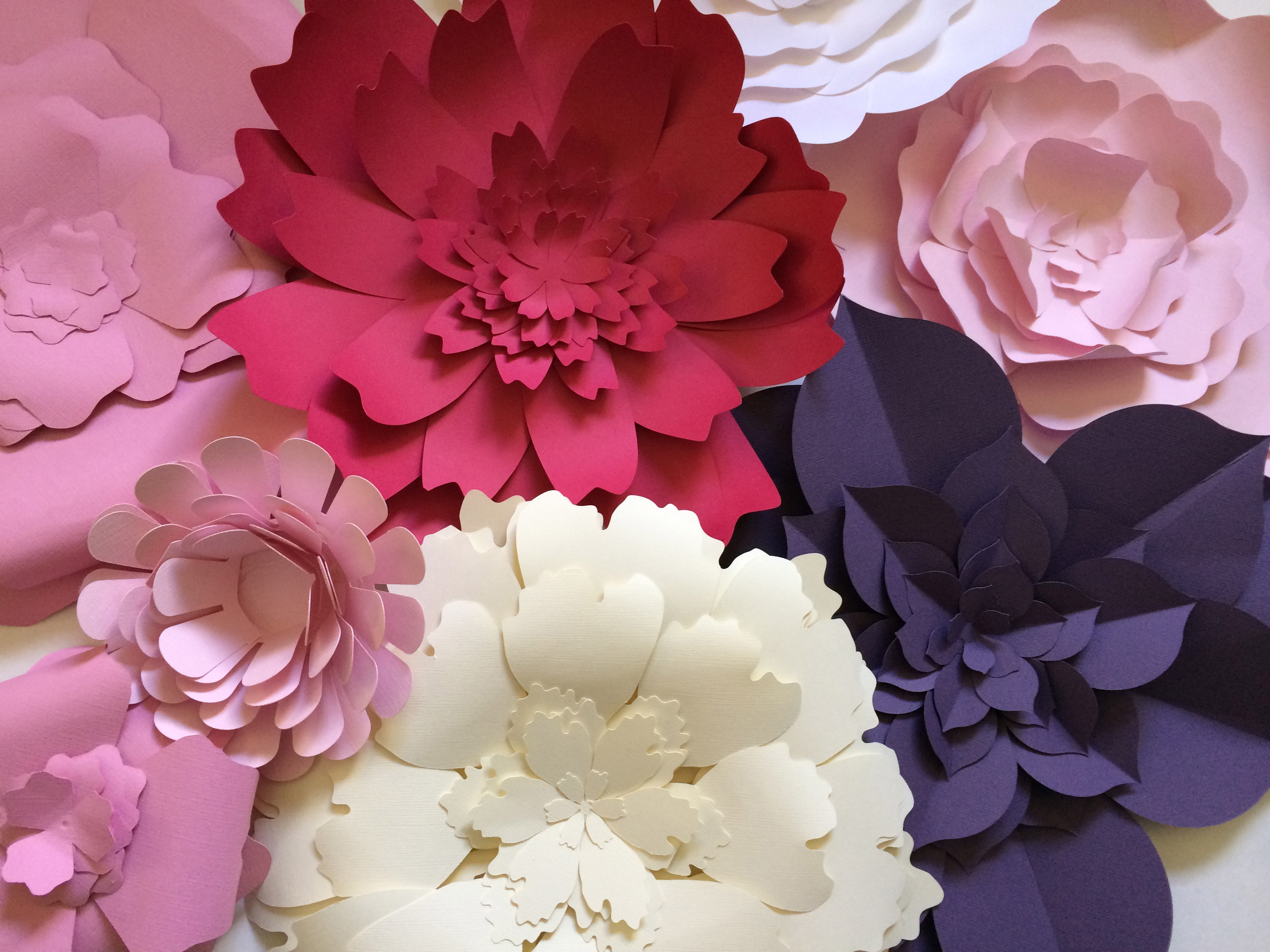 large paper flower wall decor paperflora