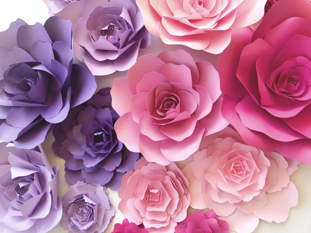 Paperflora paper flower walls backdrops and home decor gallery mightylinksfo Gallery
