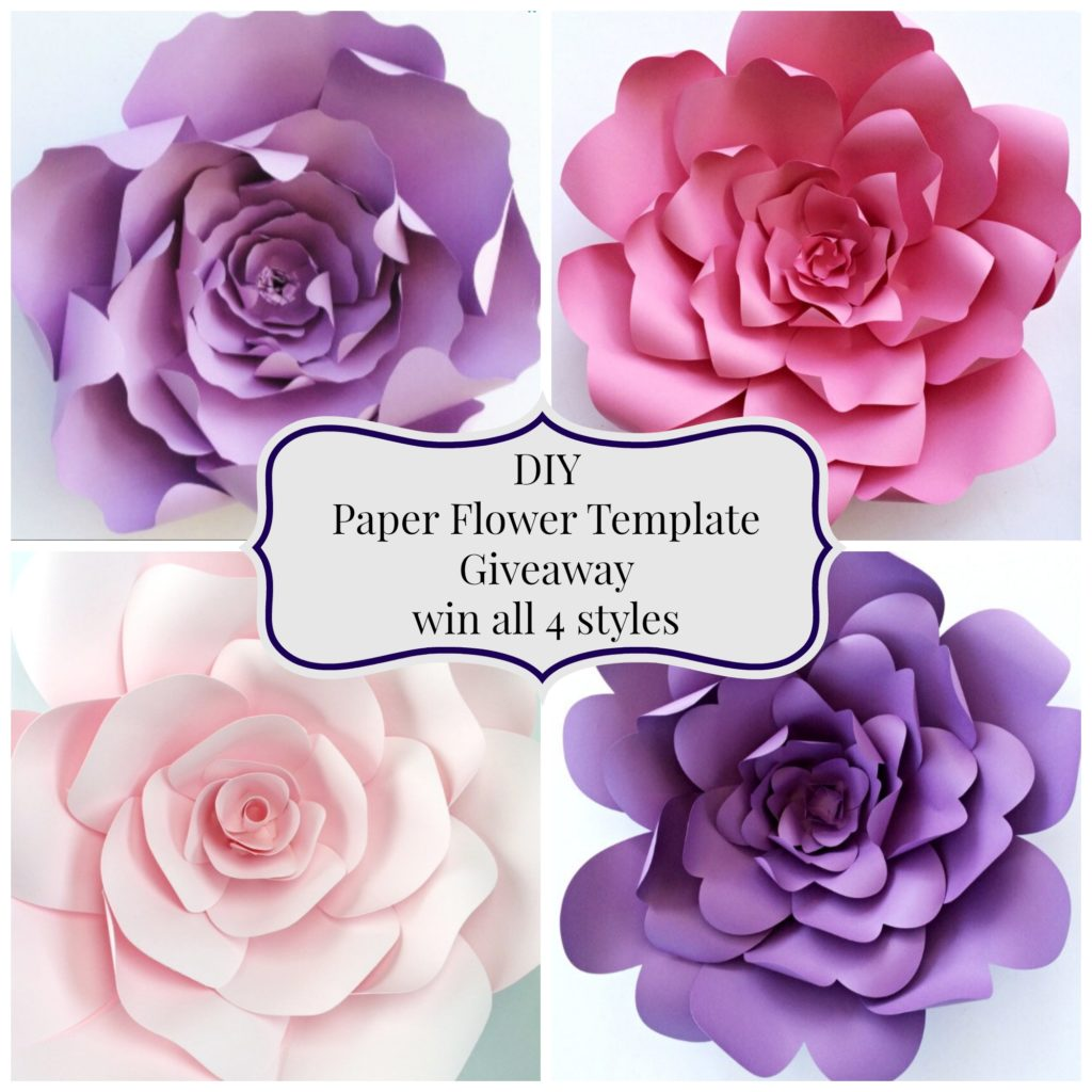 Paper flower template giveaway paperflora whats better than having a beautiful paper flower backdrop at your next event that wow your guests or a wall of paper flowers to take those gorgeous i mightylinksfo